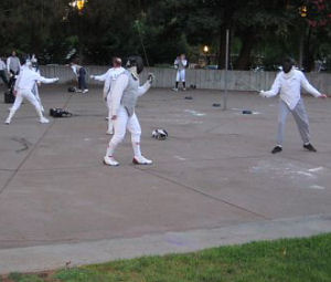 Fencing in the Park
